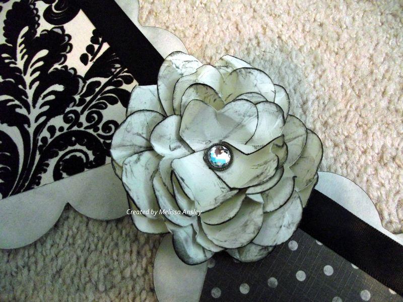 Tuxedo Flower