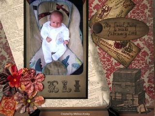 Eli Baby Bouncer Luggage and Flowers