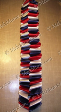 HOMECOMING MUM BRAIDS 026
